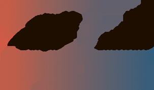 институт бахира лого